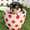 Аватар пользователя bigdog